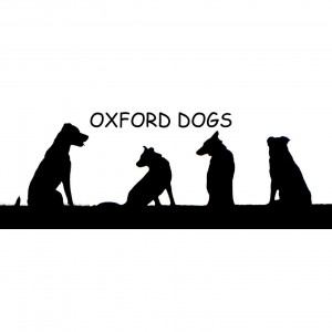 oxford dogs